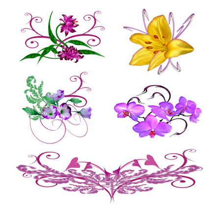 Exotic Flower Tattoo Designs 1000 Images About On Pinterest Costa Rica Tree Frogs